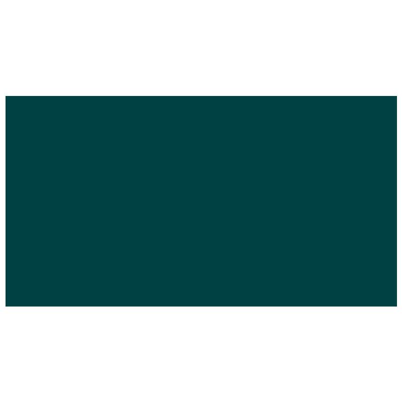 Mozi+